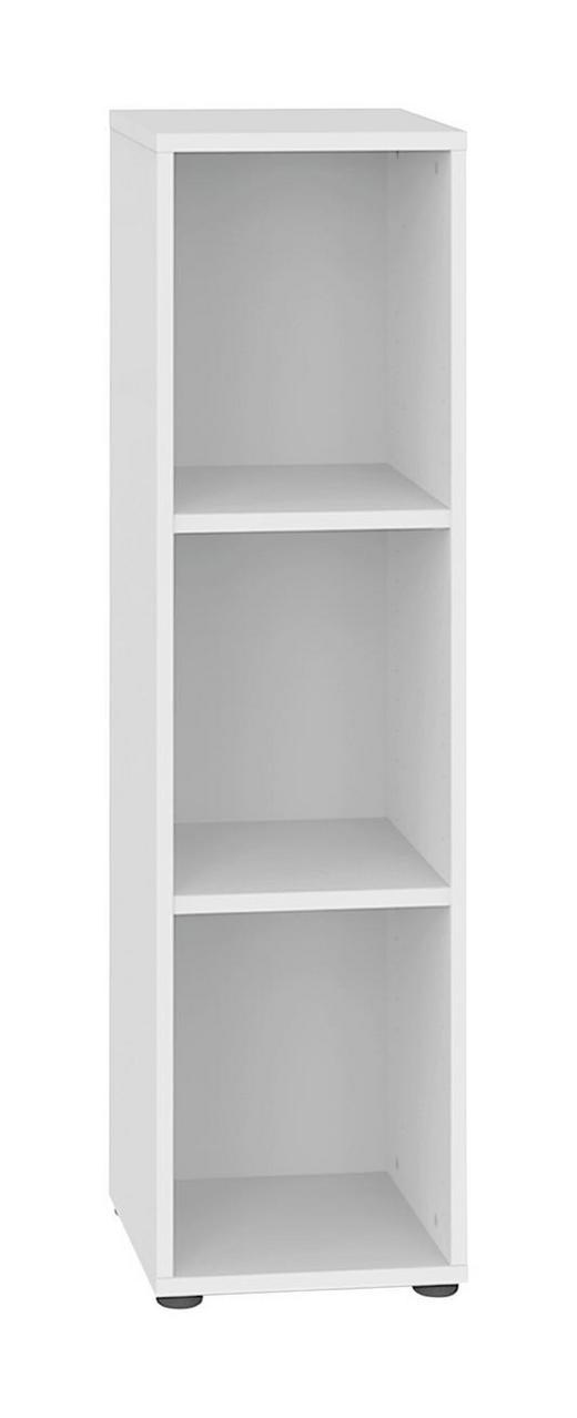 REGAL Weiß - Schwarz/Weiß, Design, Holz/Kunststoff (40/119/32.5cm) - WELNOVA