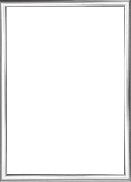 BILDERRAHMEN  Silberfarben - Silberfarben, Basics, Glas/Kunststoff (31/41cm)