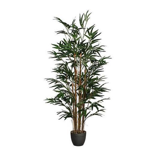 KUNSTPFLANZE Bambus - Braun/Grün, Kunststoff (120cm)