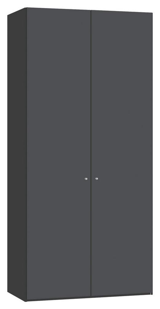 DREHTÜRENSCHRANK 2  -türig Anthrazit, Schwarz - Anthrazit/Silberfarben, Design, Glas/Holzwerkstoff (101,9/220/58,5cm) - JUTZLER
