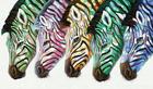 OLJEMÅLNING - multicolor, Basics, trä/textil (120/70cm) - Monee