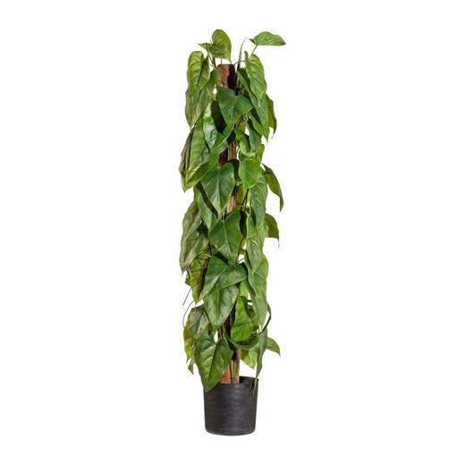 KUNSTPFLANZE Anthurie - Grün, Kunststoff (90cm)
