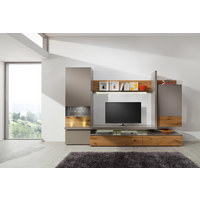 DNEVNI REGAL  hrast, sivo rjava - sivo rjava/črna, Design, kovina/umetna masa (297,6/196,9/55,5cm) - Moderano