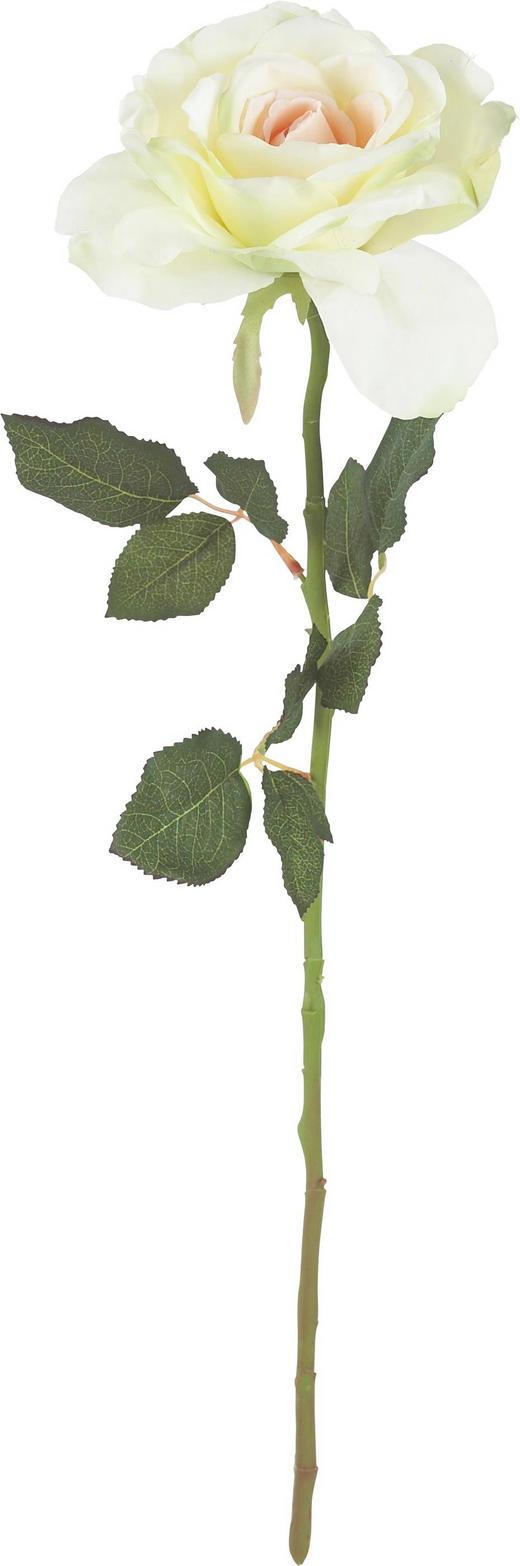 CVIJEĆE UMJETNO - šampanjac/zelena, Konvencionalno, tekstil/plastika (56cm)