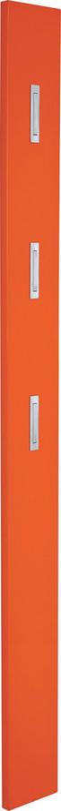 GARDEROBENPANEEL Hochglanz Orange - Orange, Design (15/170/4cm) - Xora