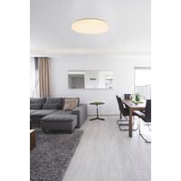 LED STROPNÍ SVÍTIDLO - bílá, Design, kov/umělá hmota (54/7,6cm)