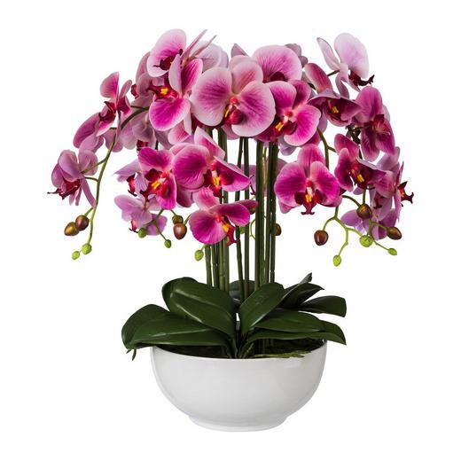 KUNSTBLUME Orchidee - Magenta/Grün, Trend, Kunststoff (54cm)