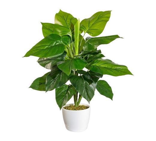KUNSTPFLANZE Philodendron  - Grün, Kunststoff (50cm)