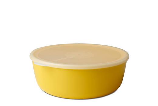 SCHALE Kunststoff - Klar/Gelb, Design, Kunststoff (25/23,3/8,7cm) - Mepal Rosti