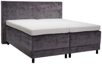 POSTEL BOXSPRING, 180 cm  x 200 cm, textil, šedá - šedá/černá, Konvenční, dřevo/textil (180/200cm) - Dieter Knoll