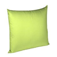 KISSENHÜLLE Hellgrün 40/40 cm - Hellgrün, Basics, Textil (40/40cm) - Fleuresse
