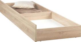 BETTKASTEN - Sonoma Eiche, Design, Holzwerkstoff/Kunststoff (198,6/23/63,5cm) - Carryhome