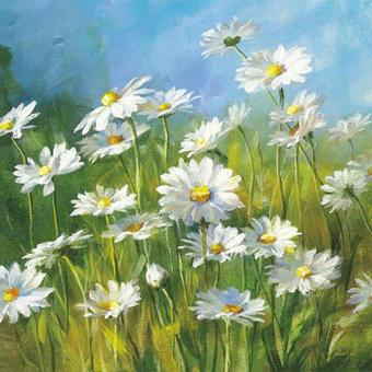 Blumen, Landschaft & Natur KEILRAHMENBILD - Multicolor, Basics, Holz/Textil (55/55/3,5cm) - EUROGRAPHICS