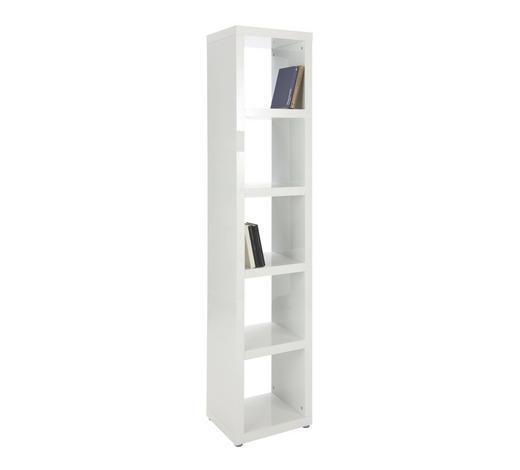 REGAL in Weiß - Alufarben/Weiß, Design, Holzwerkstoff/Kunststoff (44/203/35cm) - Carryhome
