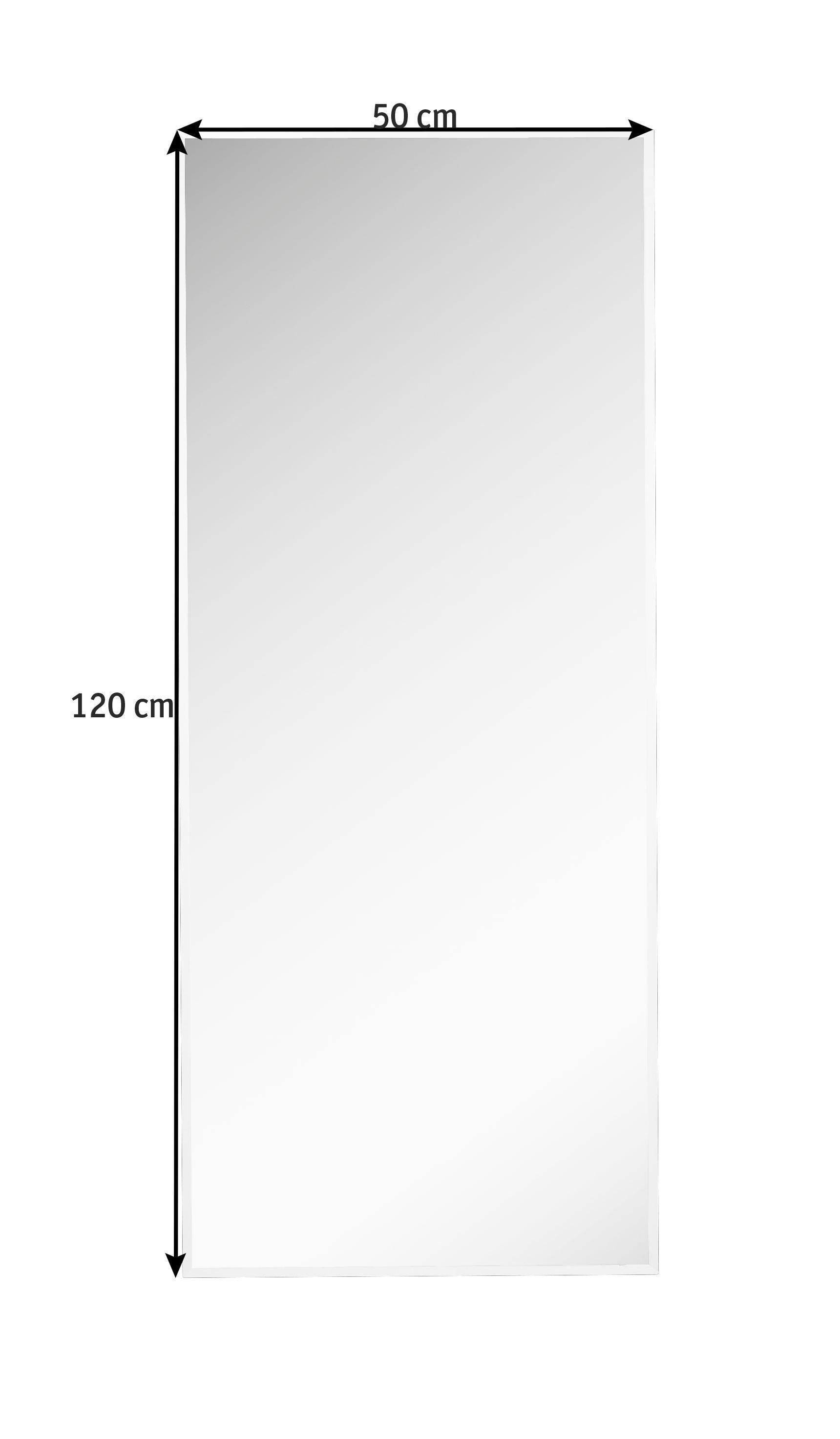 SPIEGEL - Silberfarben, Design, Glas (50/120/1cm) - BOXXX
