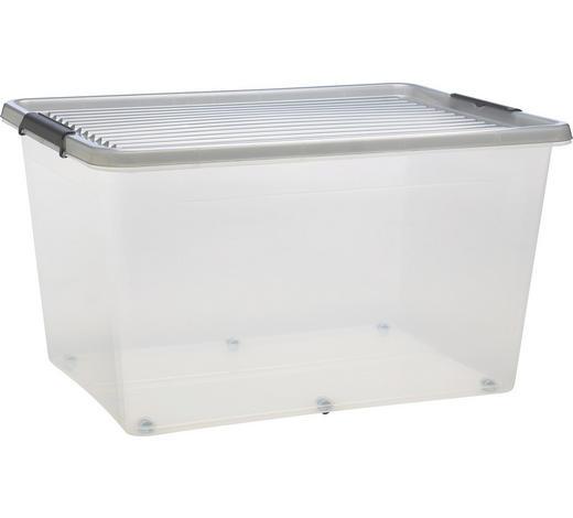 BOX S VÍKEM - čiré, Basics, umělá hmota (76/42/57cm) - Plast 1
