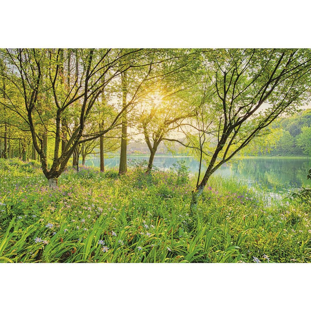 Komar Fototapete Spring Lake