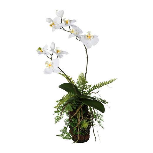KUNSTBLUME Orchidee - Weiß/Braun, Trend, Kunststoff (57cm)