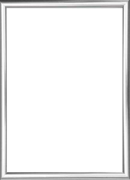 BILDERRAHMEN in Silberfarben - Silberfarben, Basics, Glas/Kunststoff (25/31cm)