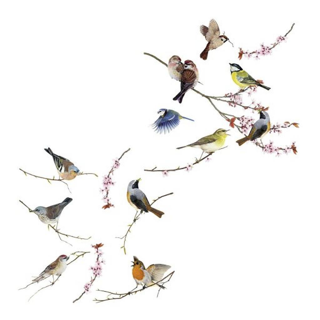 Komar Fensterbild Birds