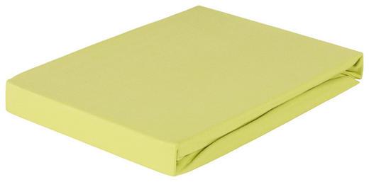SPANNBETTTUCH Jersey Grün bügelfrei, für Wasserbetten geeignet - Grün, Basics, Textil (100/200cm) - Esposa