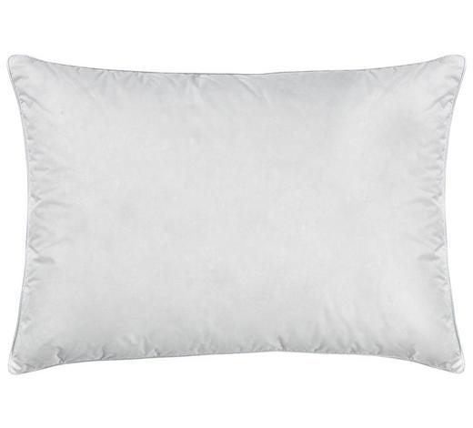 POLSTER 40/60 cm  - Weiß, Basics, Textil (40/60cm) - Billerbeck