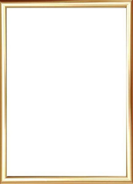 BILDERRAHMEN  Goldfarben - Goldfarben, Basics, Glas/Kunststoff (41/31/1.75cm)