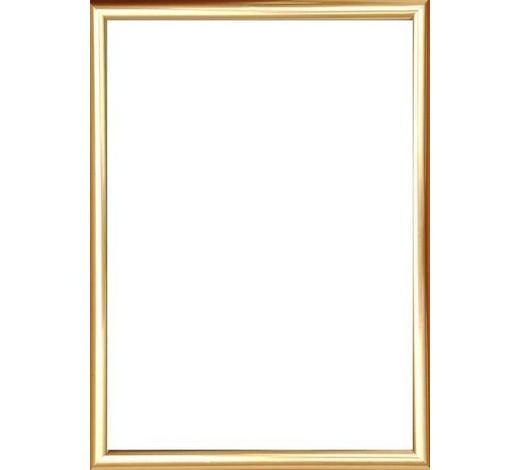 BILDERRAHMEN in Goldfarben - Goldfarben, Basics, Glas/Kunststoff (51/41/1.75cm)