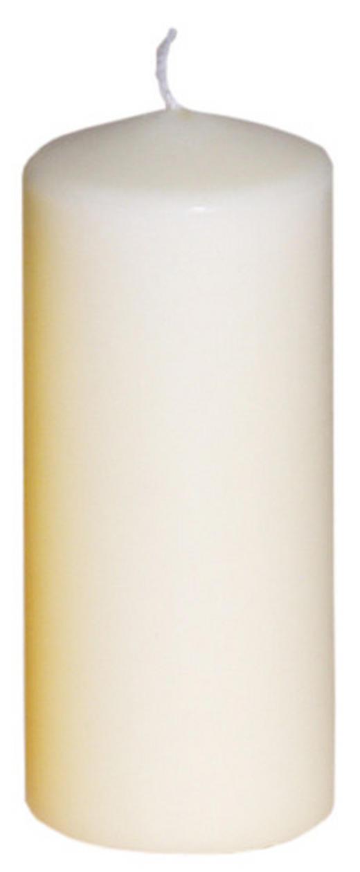 STUMPENKERZE 5,7/13 cm - Champagner, Basics (5,7/13cm) - Steinhart