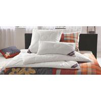 KOPFKISSEN  40/80 cm       - Creme, Basics, Naturmaterialien/Textil (40/80cm) - Sleeptex
