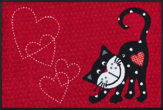 FUßMATTE 50/75 cm Katze Rot - Rot, Basics, Kunststoff/Textil (50/75cm) - Esposa