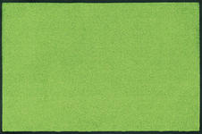 FUßMATTE 40/60 cm Uni Grün  - Grün, Basics, Kunststoff/Textil (40/60cm) - Esposa