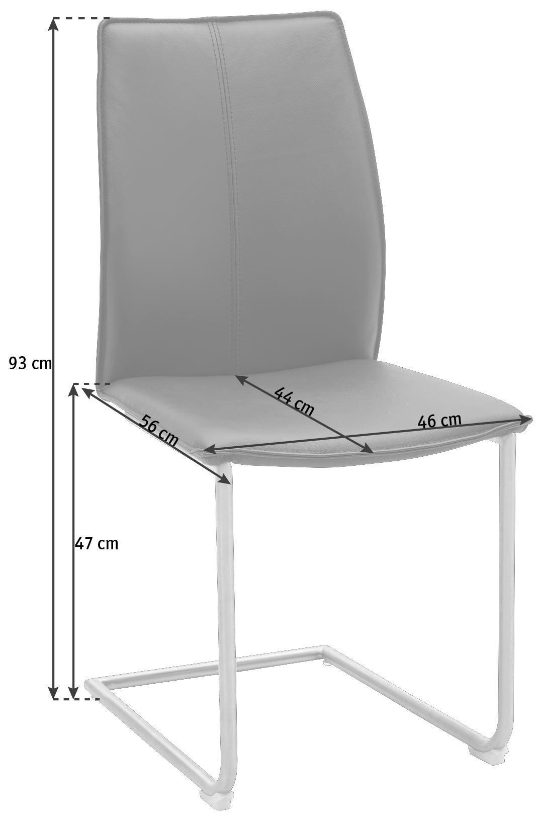 SCHWINGSTUHL in Leder, Metall Edelstahlfarben, Schwarz - Edelstahlfarben/Schwarz, Design, Leder/Metall (1/1/1cm) - DIETER KNOLL