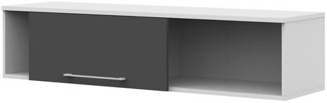 HÄNGEELEMENT Anthrazit, Weiß  - Anthrazit/Weiß, Design, Metall (163,8/36/43,4cm) - Moderano