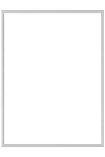 BILDERRAHMEN  Silberfarben - Silberfarben, Metall (50/70cm)