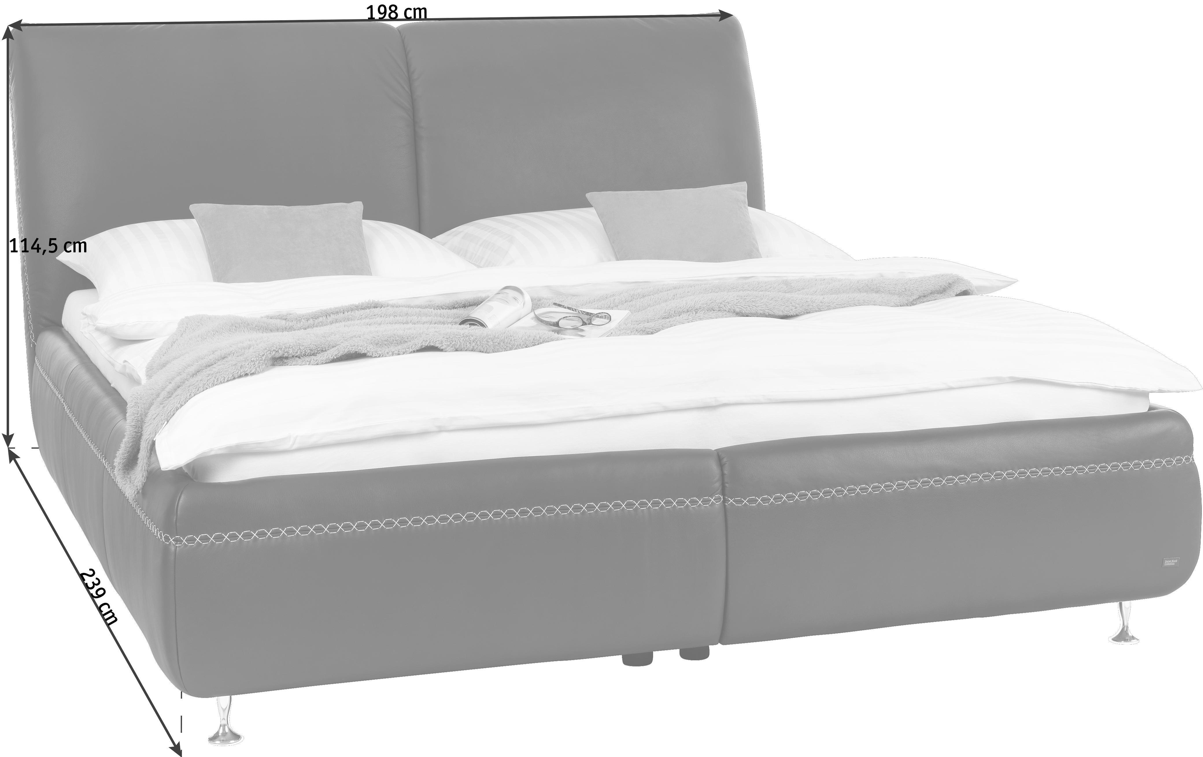 POLSTERBETT 160/200 cm - Chromfarben/Braun, Design, Leder/Metall (160/200cm) - DIETER KNOLL
