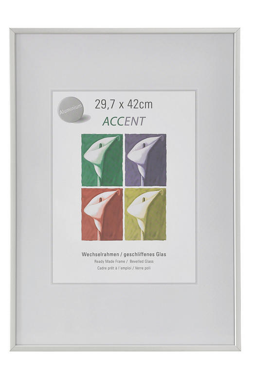 BILDERRAHMEN  Silberfarben - Silberfarben, Basics, Metall (29.7/42cm)
