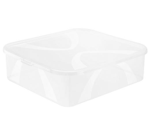 BOX S VÍKEM, 12 l - přírodní barvy, Konvenční, umělá hmota (42/35,1/11,2cm) - Rotho