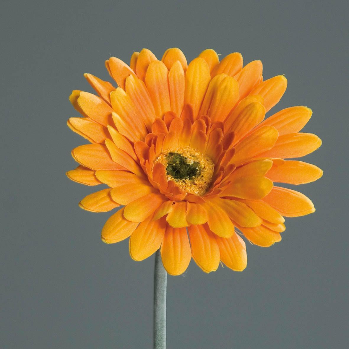 KUNSTBLUME - Orange/Grün, Basics, Kunststoff/Textil (56cm) - Ambia Home