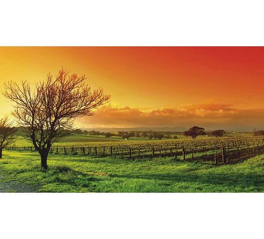 KEILRAHMENBILD  - Multicolor, Natur, Holz/Papier (180/100/3cm)