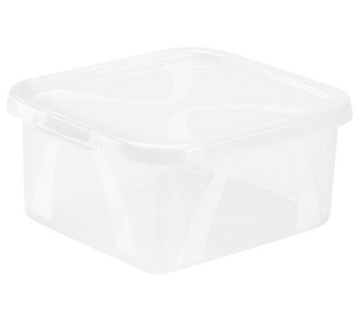 BOX S VÍKEM, 2 l - přírodní barvy, Konvenční, umělá hmota (19,8/16,5/8,9cm) - Rotho