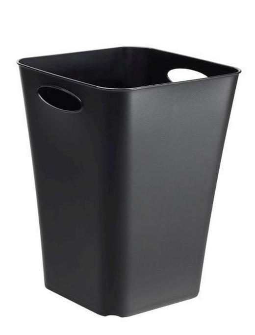 BOX Kunststoff Schwarz - Schwarz, Basics, Kunststoff (29.5/29.5/39.5cm)