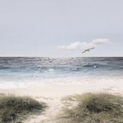 Strand & Meer GLASBILD - Multicolor, Basics, Glas (20/20/1,70cm) - Eurographics