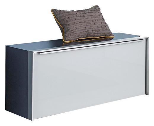 GARDEROBENBANK Alufarben, Schwarz, Weiß - Alufarben/Schwarz, Design, Glas/Metall (102/44/33,5cm) - Dieter Knoll