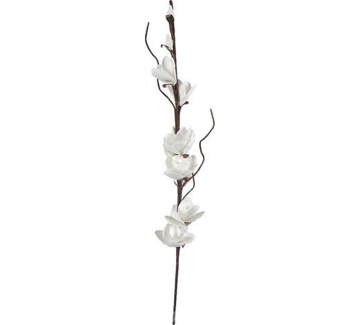 KVĚTINA UMĚLÁ - bílá/hnědá, Basics, kov/umělá hmota (122cm) - Ambia Home
