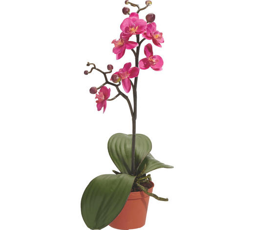 UMĚLÁ ROSTLINA, orchidej - pink/zelená, Basics, umělá hmota (9/9/40cm)