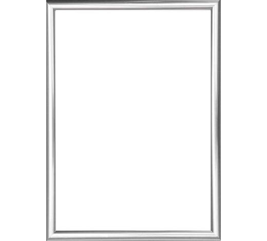 RÁM NA OBRAZY - barvy stříbra, Basics, umělá hmota/sklo (82/62/2cm)