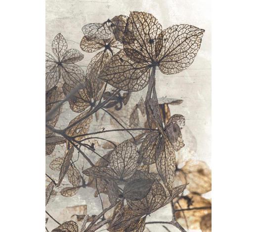 BILD - Multicolor, Natur, Papier (50/70cm)