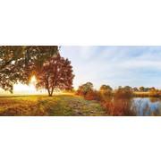 DEKOPANEEL - Multicolor, Basics, Holz/Papier (50/115/3,30cm) - Eurographics