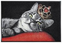 FUßMATTE 50/75 cm Katze Rot, Schwarz  - Rot/Schwarz, Basics, Kunststoff/Textil (50/75cm) - Esposa